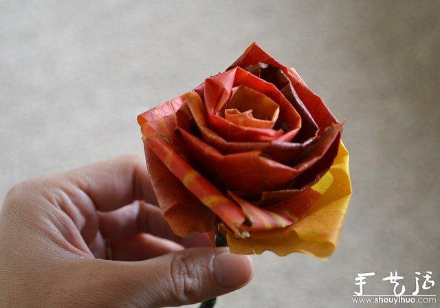 火红枫叶手工制作的玫瑰