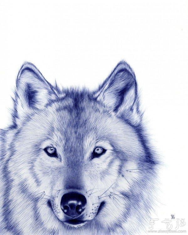 圆珠笔绘制的动物肖像 3