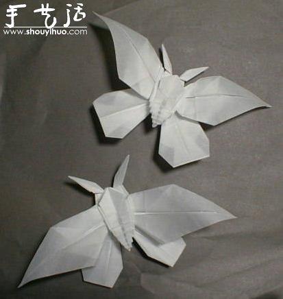 昆虫折纸作品欣赏(8)