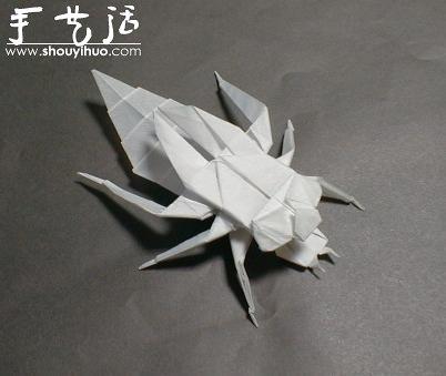 昆虫折纸作品欣赏(5)