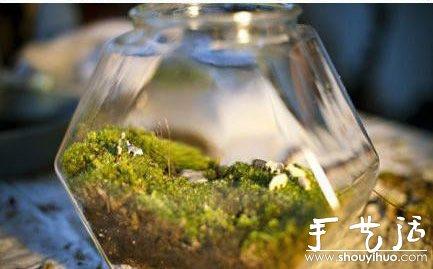 手工diy苔藓盆景的教程,准备好玻璃瓶,苔藓植物,小石子就开始动手吧