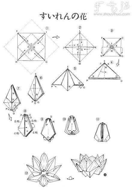 摺紙帶蓮蓬的蓮花教學