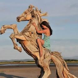 浮木雕刻的逼真动物雕塑