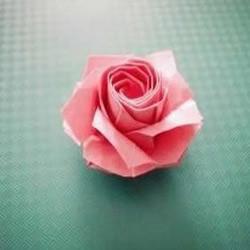 川崎玫瑰的折法,折川崎玫瑰的教程