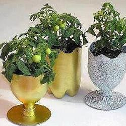 饮料塑料瓶和光盘废物利用制作花盆的教