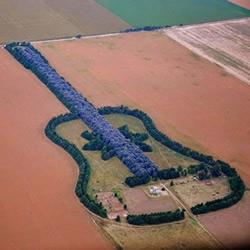 建造巨大吉他庄园