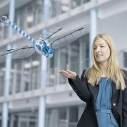 电子遥控蜻蜓