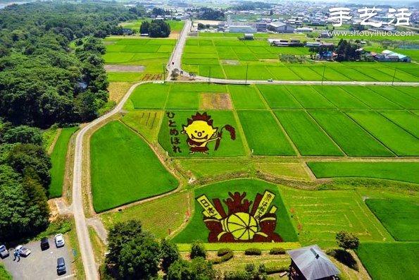 奇妙有趣創意DIY 稻田裡創作巨幅畫卷