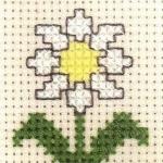 木菊的十字绣绣法