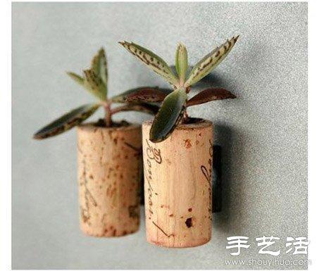 利用DIY迷你盆栽