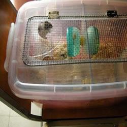 超大仓鼠笼制作方法 整理箱DIY仓鼠笼子