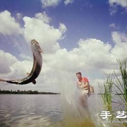 春季钓鲤鱼的技巧方法
