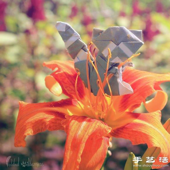栩栩如生的创意折纸小动物(3)