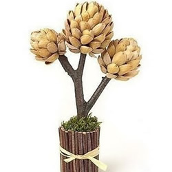 开心果壳+树枝+橡皮泥 DIY装饰坚果树