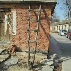 材料不够,梯子只能做这样了。。。
