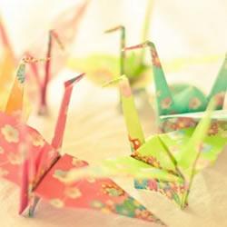 彩纸折的漂亮千纸鹤