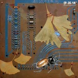 掉落叶子与电子垃圾DIY制作环保艺术作品