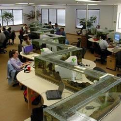 老板我也要!用水族箱隔间的梦幻办公室
