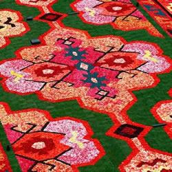 超壮观比利时鲜花地毯!共一百万支秋海
