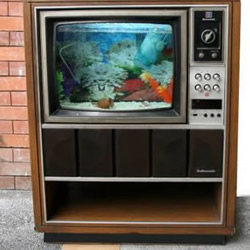 旧电视手工DIY改造怀旧鱼缸水族箱图解教