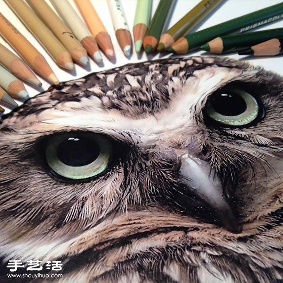 绘画艺术 彩铅画  铅笔,水彩,色铅笔,马克笔这些我们一般常见的绘图