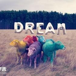 奇幻彩色羊摄影 「DREAM SERIES」