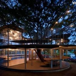 大树幼儿园设计 学会与自然一同嬉戏