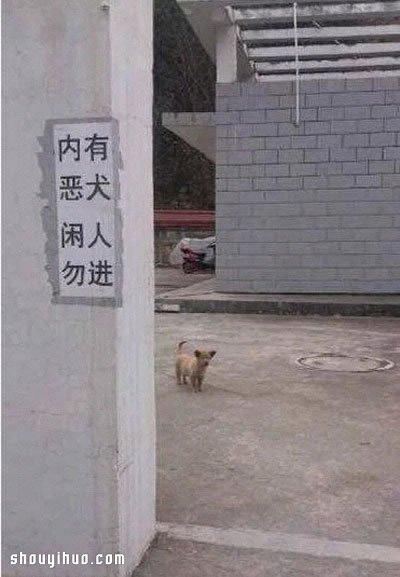 难得一见的8张趣图 不信点不中你的笑穴! -  www.shouyihuo.com