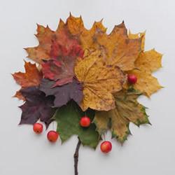 秋日冒险季 一起来DIY回归自然的大地艺术