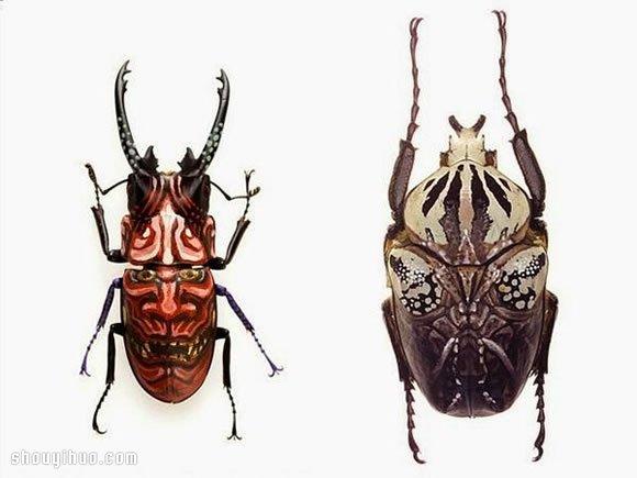 可怕却也美丽 昆虫标本上的脸谱面具绘画