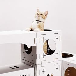 回收纸箱制成纸板 以积木概念打造幸福猫窝