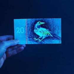 自制欧元伪钞 精细到让真钞像玩具