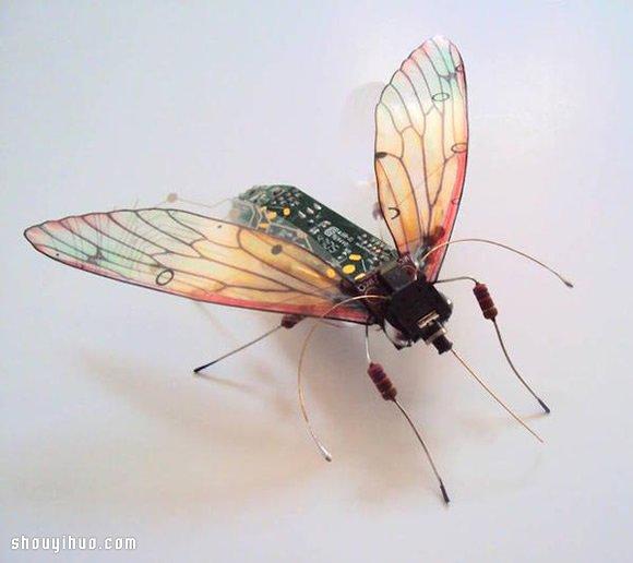 废弃电路板手工制作美丽的昆虫雕塑