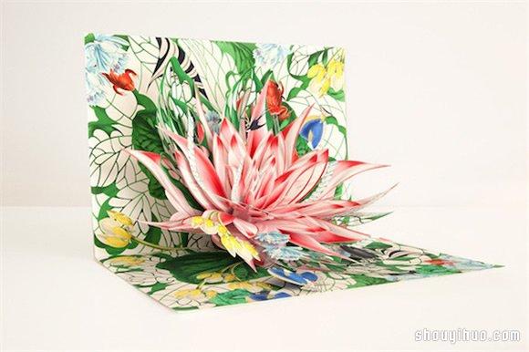 Bozena Rydlewska 的3D立體紙雕書
