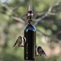 玻璃酒瓶变废为宝小制作 每款都很小资哦!