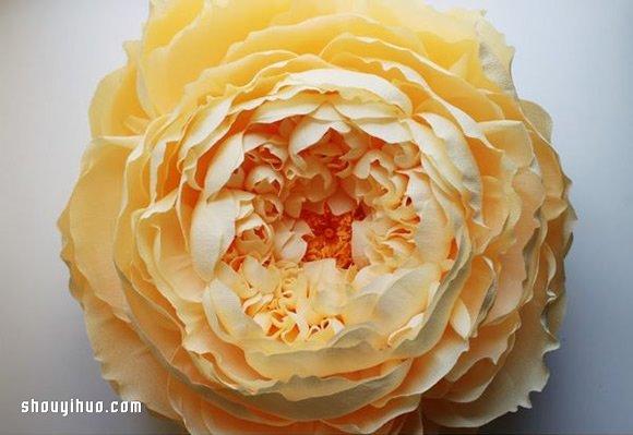 Tiffanie Turner的大型紙藝花卉作品欣賞