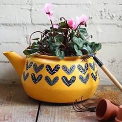 坏掉的烧水壶废物利用DIY制作花盆的方法