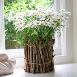 利用枯枝DIY制作田园风花瓶的方法图解