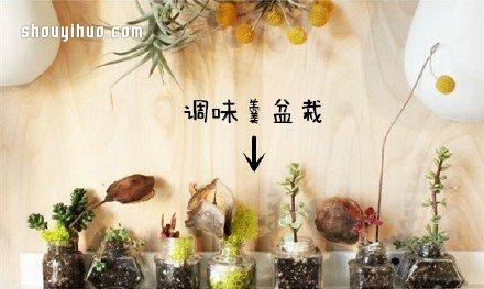 废物利用创意花盆盆栽DIY