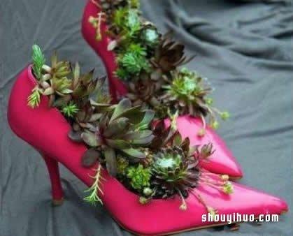 旧鞋子废物利用变花盆 DIY制作超有特色盆栽