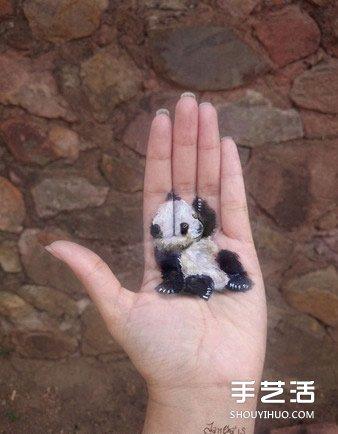 养在手掌心的迷你动物