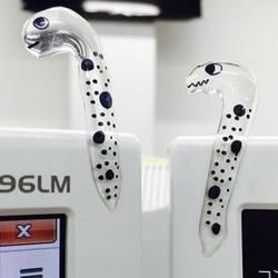 创意DIY:如何用强力胶自制花园鳗的方法