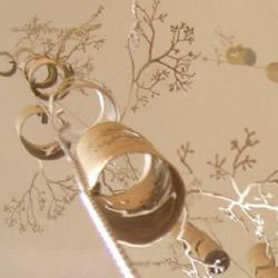 自制挂饰:卫生纸卷筒剪出枝桠丛生的感