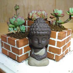 将花坛搬到桌子上!利用废砖头DIY制作花盆