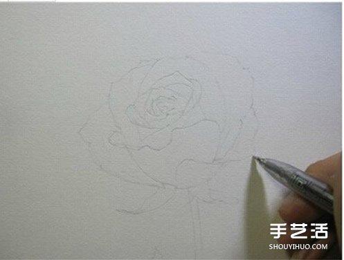 铅玫瑰花的画法步骤 玫瑰花彩色铅笔画教程图片