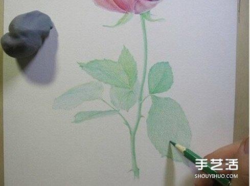 玫瑰花画法彩铅笔画图片