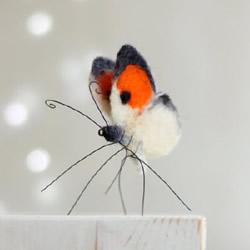 美丽的羊毛毡蝴蝶图片欣赏 逼真自然宛如