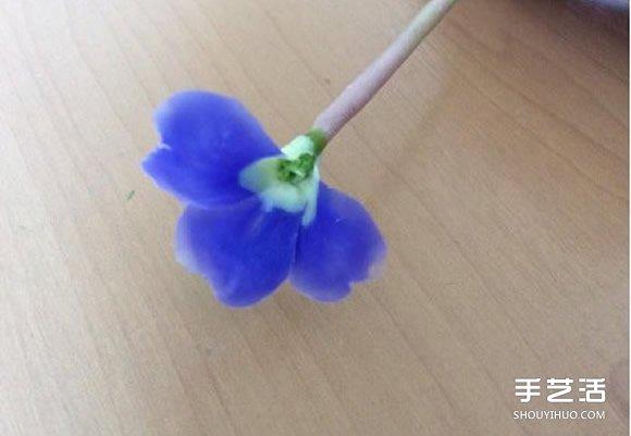 手工制作超轻粘土花朵教程图片