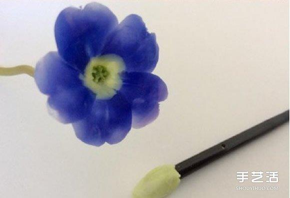 超轻粘土花教程 手工制作超轻粘土花朵教程图片