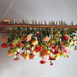 倒挂鲜花吊饰DIY教程 让家居装饰鲜花逆生